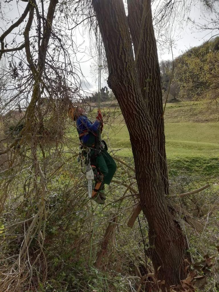Lavori in corso al Golf Club I Lauri